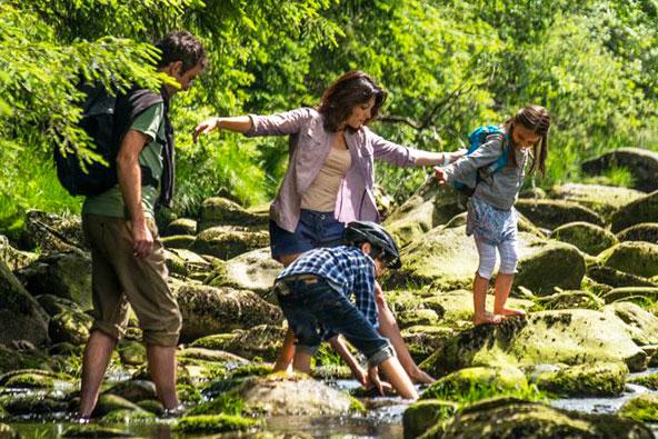 טיול רגלי מהנה בין פלגי המים בשמורת שומבה