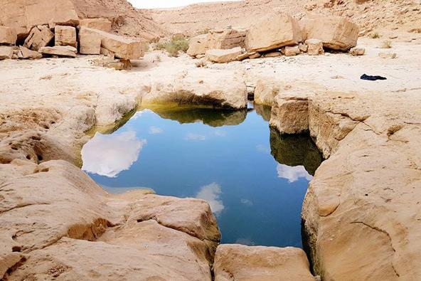 גבים במדבר: מים שקטים