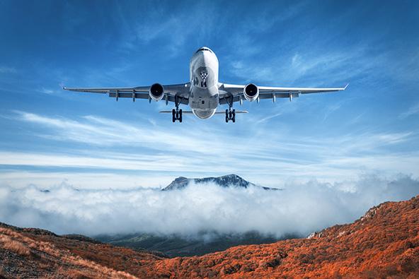 ביטול נסיעה מעל גיל 65