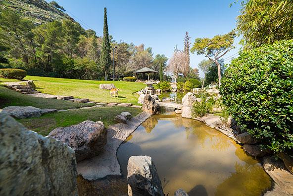 הגן היפני בקיבוץ חפציבה. פינה של רוגע למרגלות הגלבוע