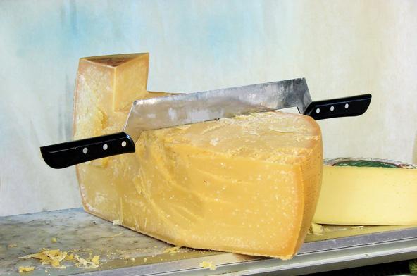 גבינה מקומית. הטעמים של קטלוניה טובים לא פחות מהנופים שלה