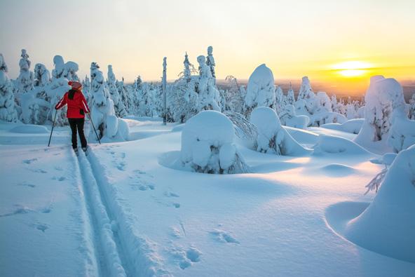 ינואר בלפלנד, זמן מושלם לפעילויות בשלג