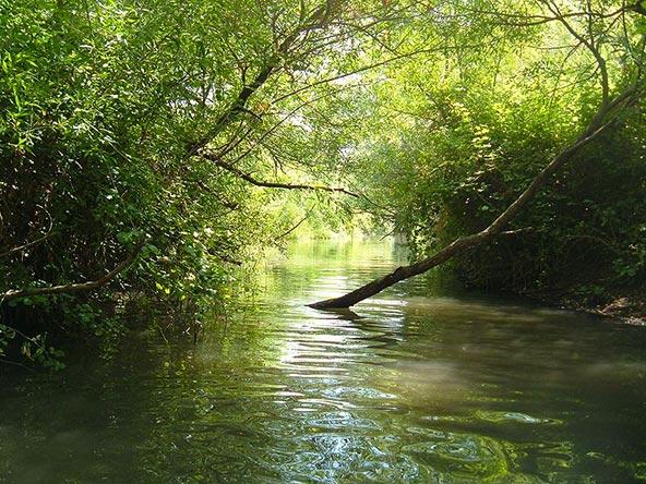 המג'רסה, טיול מים אולטימטיבי
