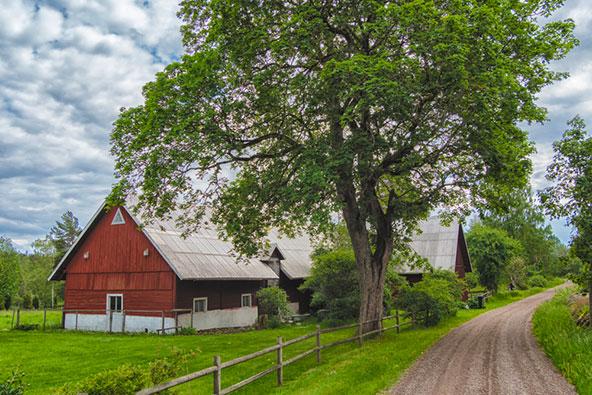 לינה בחווה יכולה להיות אלטרנטיבה מוצלחת למלון או דירה עירונית