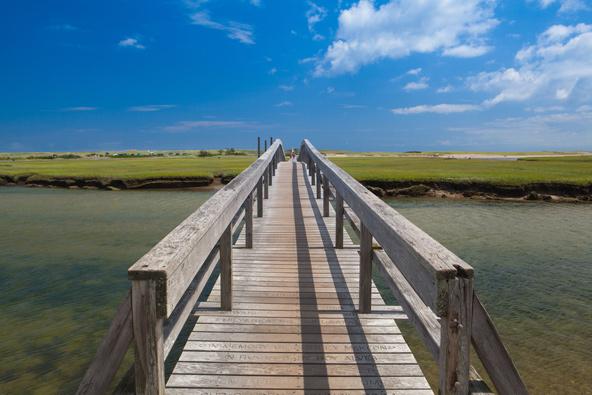 סנדוויץ' זה לא רק כריך... טיילת העץ של העיירה סנדוויץ' עוברת מעל אזור ביצות