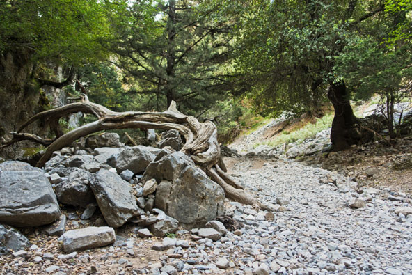 שביל הליכה בקניון אימברוס, אחד מאתרי הטבע היפים באי