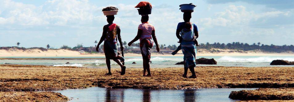 מוזמביק - המדריך המלא לטיול למוזמביק
