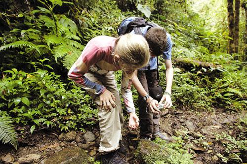 פנמה – טיול ביער