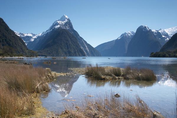 ניו-זילנד בזול – איילת חוסכת (חלק א')