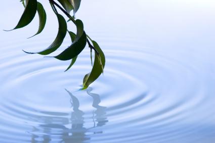 מים: הנפט של המאה ה-21