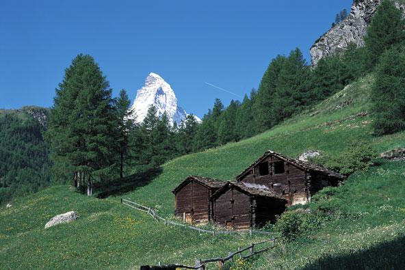 צרמט, שווייץ – תענוגות קיציים