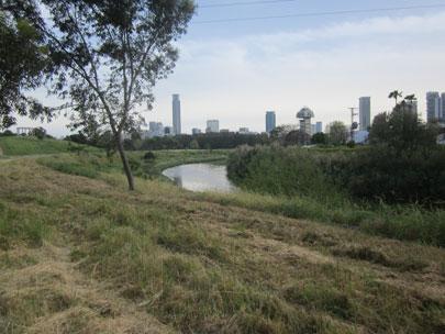 טבע בעיר: אתרי טבע בתל אביב