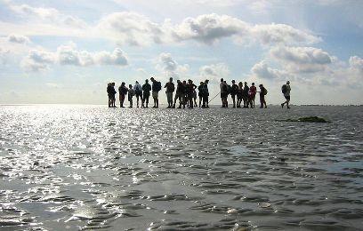 צפון הולנד: ים של חולות