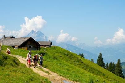 חופשת קיץ באלפים השוויצריים: חיים בתוך גלויה