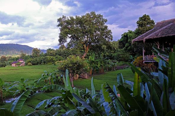 צפון תאילנד – מסע ללאנה לנד