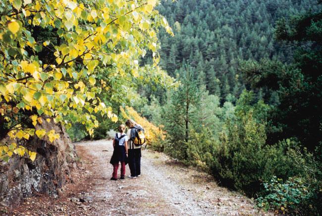 טיול בפירינאים: היידה, בנות ההרים