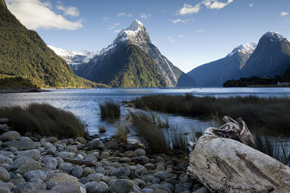 סרטון: חלום ושמו ניו זילנד