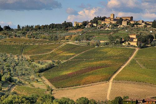 טוסקנה – תענוגות איטלקיים
