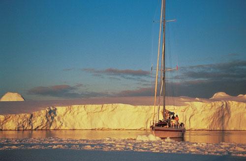 אנטארקטיקה: ריצת מרתון – לרוץ כמו שציפורים עפות