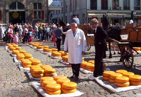 טיולים לאוהבי גבינה