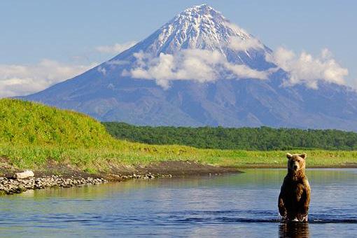חצי האי קמצ'טקה: טבע פראי
