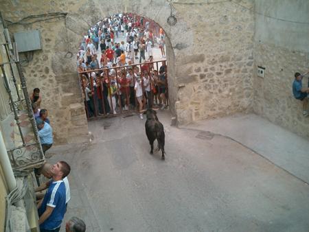 ספרד – מרוץ הפרים בפמפלונה