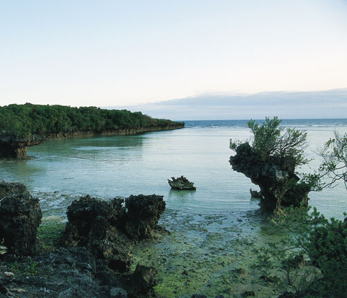 זנזיבר – יומן האי הבודד