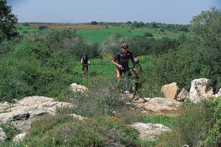 טיול אופניים בשפלת יהודה