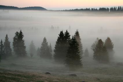 הענק הירוק של צ'כיה