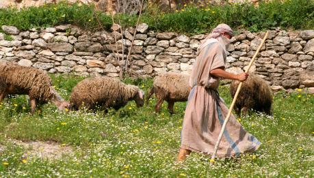 מקצועות עתיקים: שובם של חולבי העיזים