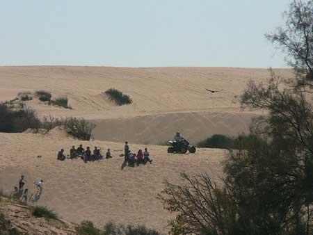 הדיונה הגדולה באשדוד: ארגז חול ענק