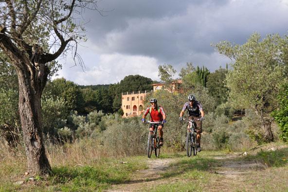 מסלולי אופניים באירופה: המלצות
