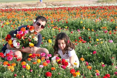 אטרקציות אביביות לכל המשפחה