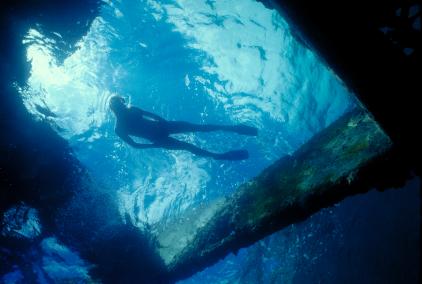 הריסות האוניה בריטניק יהפכו למוזיאון תת ימי