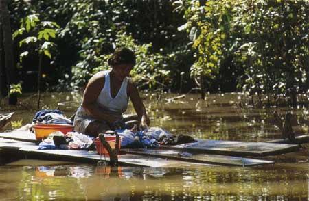 נהר הבני בבוליביה – מסע שיט ביער הגשם