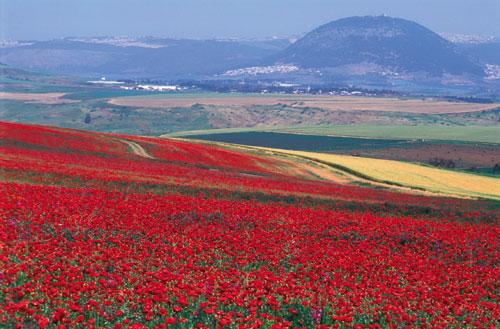 המקומות הרומנטיים בישראל