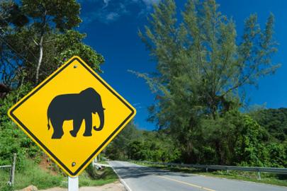 תאילנד – טיפים לנהיגה נכונה