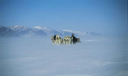 מסע עם אסקימואים ומזחלות כלבים בקנדה