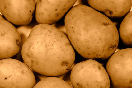 תפוחי אדמה – לא מה שחשבתם