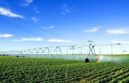 """""""החקלאות צריכה לעבור שינוי מהותי"""""""