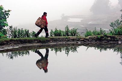 יונאן: תמונות ממסע בדרום-מערב סין