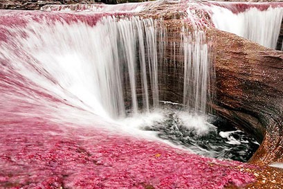 נהר חמשת הצבעים בקולומביה