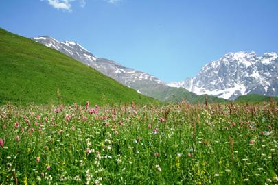 טבע ושטח בקווקז הגאורגי