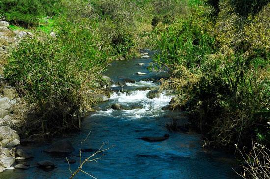 אתרי מים בגולן – היופי שאחרי הגשם