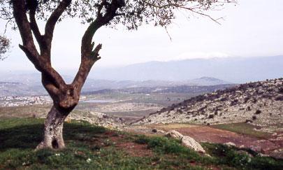 הר דלתון, קבר רבי יוסי הגלילי