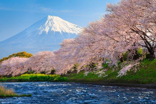 עשרת הגדולים של יפן
