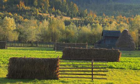 רומניה בסתיו: הקרפטים וטרנסילבניה