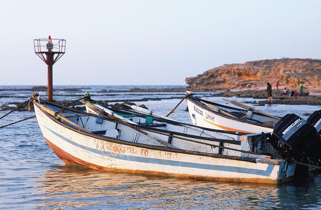 שביל ישראל: שפיה – קיסריה – נתניה (מסלול 8)
