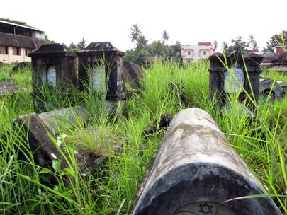 יהודי קוצ'ין: בעקבות היהודים של דרום הודו
