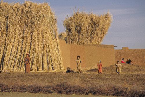 מרוקו: הברברים, אדוני האטלס
